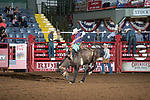 Colby Winstead on 734 of SY during first round of the Fort Worth Stockyards Pro Rodeo event in Fort Worth, TX - 8.2.2019 Photo by Christopher Thompson