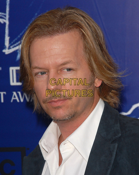 DAVID SPADE.The 2007 Taurus Stunt Awards held at Paramount Studios in Hollywood, California, USA..May 20th, 2007.headshot portrait goatee facial hair .CAP/DVS.©Debbie VanStory/Capital Pictures