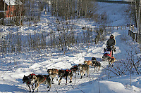 Saturday, February 24th, Knik, Alaska.  Jr. Iditarod musher Matthew Durden on the trail shortly after leaving the Knik start
