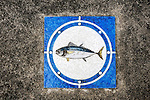 A tile depicting a blue fin tuna is fixed into the pavement outside the main market at Misaki Port, west of Tokyo, Japan.