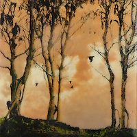 Sunset sky encaustic photography of forest and crows