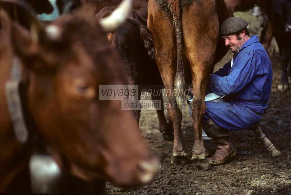 Europe/France/Auvergne/15/Cantal/env de Mandailles: Traite des vaches de race Salers au buron pour la préparation en estive du fromage AOC Cantal [Non destiné à un usage publicitaire - Not intended for an advertising use]<br /> PHOTO D'ARCHIVES // ARCHIVAL IMAGES<br /> FRANCE 1980