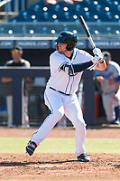 Peoria Javelinas designated hitter Ryan Boldt (26), of the Tampa Bay Rays organization, at bat during an Arizona Fall League game against the Glendale Desert Dogs at Peoria Sports Complex on October 22, 2018 in Peoria, Arizona. Glendale defeated Peoria 6-2. (Zachary Lucy/Four Seam Images)