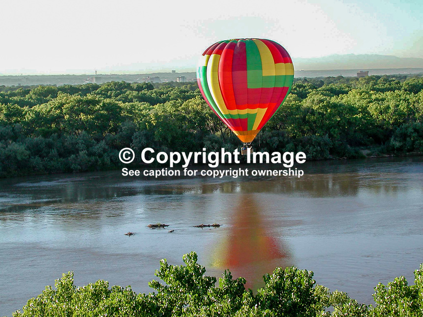 Hot air balloon floats over the Rio Grande. Cottonwood trees line the river for most of its journey through New Mexico. This section of the river is near Albuquerque. 2000091050..Copyright Image from Victor Patterson, 54 Dorchester Park, Belfast, UK, BT9 6RJ..Tel: +44 28 9066 1296.Mob: +44 7802 353836.Voicemail +44 20 8816 7153.Skype: victorpattersonbelfast.Email: victorpatterson@mac.com.Email: victorpatterson@ireland.com (back-up)..IMPORTANT: If you wish to use this image or any other of my images please go to www.victorpatterson.com and click on the Terms & Conditions. Then contact me by email or phone with the reference number(s) of the image(s) concerned.