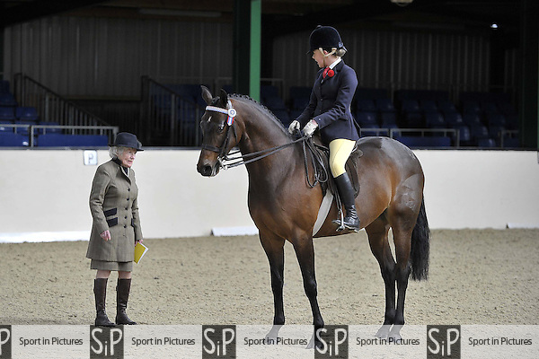 Class 41. BSPS Area 15 Essex april show. Brook Farm Training Centre. Essex. 17/04/2016. MANDATORY Credit Garry Bowden/Sportinpictures - NO UNAUTHORISED USE - 07837 394578
