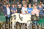 Jerry Sheehan Glencar is presented the Champion trophy for his father Declan Sheehan Belgium Blue heifer at the Mid Kerry Mart Weanling show and sale in Milltown on Saturday l-r:  Tadgh Connor (buyer), Kenneth Grant, Donal Counihan, Jerry Sheehan, Michael Randles and Denis Sheehan..