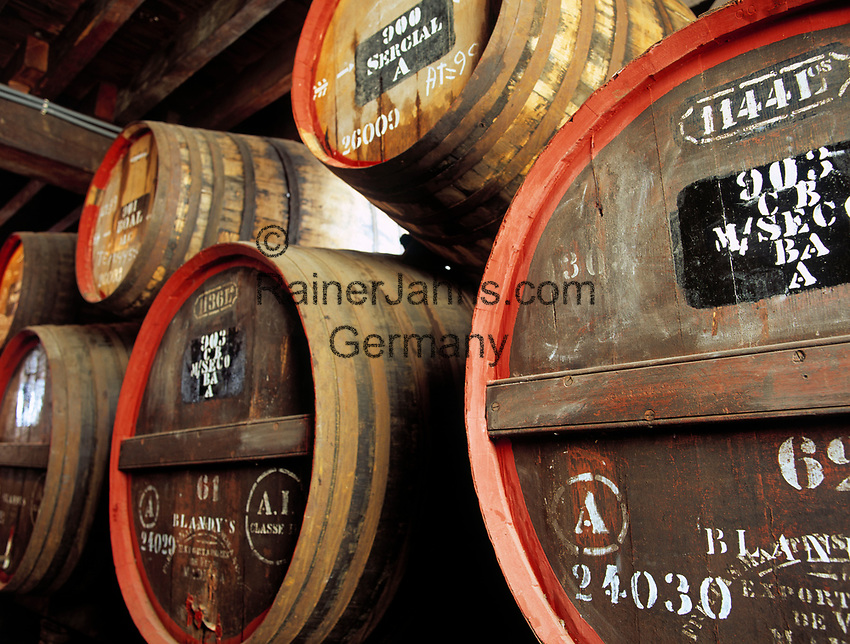 Portugal, Madeira, Funchal - Weinfaesser in der San Francisco Wine Lodge | Portugal, Madeira, Funchal - wine casks at San Francisco Wine Lodge