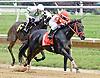 Prairie Trip winning at Delaware Park racetrack on 7/3/14