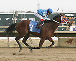 Parx Racing Win Photos_02-2014