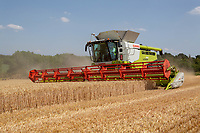 Claas Lexion 780<br />