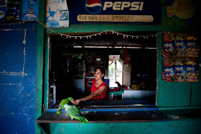 A woman feeds a pet parrot at a settlement inside the Mayan Biosphere.