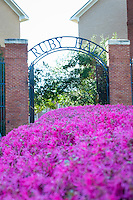 Bank of spring flowers at Ruby Hall.<br /> (photo by Russ Houston / &copy; Mississippi State University)