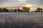 Idaho, Eastern, Driggs. Morning mists fill the Teton Valley in autumn at dawn.