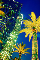 Palm trees and high rise buildings lit up at night in Los Angeles. Los Angeles California USA.
