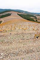 Chateau des Erles. In Villeneuve-les-Corbieres. Fitou. Languedoc. Terroir soil. Spectacular view vista over the hilltop vineyard dominated by shist. France. Europe. Schist slate soil.