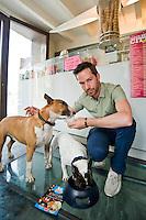 A Savignano sul Rubicone (Rimini),ice dog, il primo gelato studiato e prodotto per cani, Crociani Diego socio fondatore Ice Dog snc,