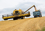 Combine harvester in feed loading trailer with grain, Chisbury, Wiltshire, England, UK