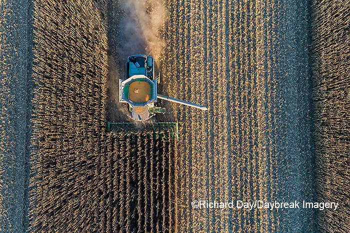 63801-13007 Harvesting corn in fall-aerial  Marion Co. IL