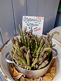 ENGLAND, Brighton, Asparagus from the Farmers Market