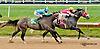 Play Bull winning at Delaware Park on 8/3/13