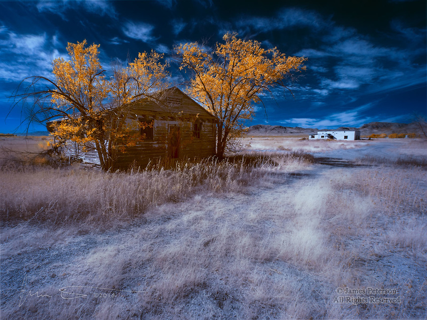Autumn of Days (Infrared) ©2018 James D Peterson.  Hard times have befallen southeastern Arizona's Sulphur Springs Valley.  But these forlorn and long-abandoned dwellings still echo with the spirits of their erstwhile occupants.