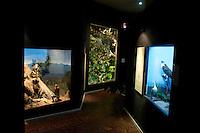 Museo de las Aves de Mexico, Saltillo Coahuila