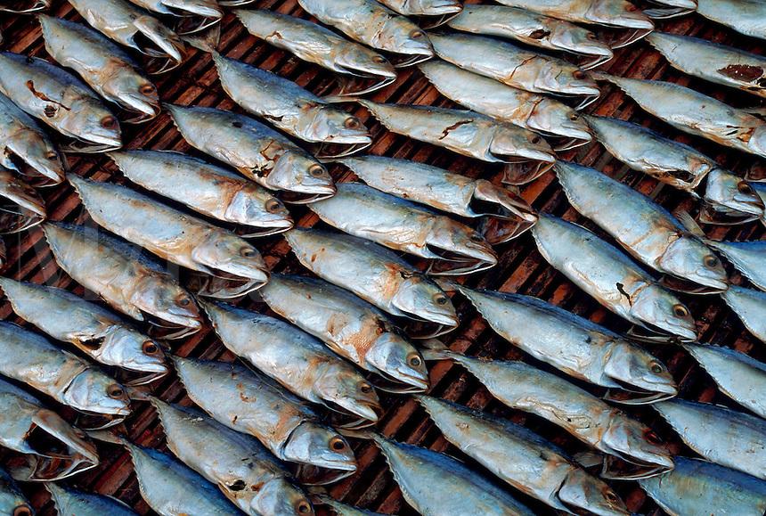 Fish drying in sun on bamboo, Hong Kong, China