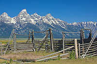 Remains of a historic Corral along Mormon Row frame the Teton Range.  Grand Teton National Park, United States, Wyoming.  Mormon Row is a line of historic homesteads along Jackson-Moran Road, Grand Teton National Park.