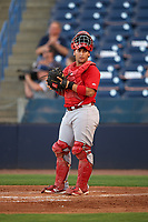 Palm Beach Cardinals catcher Jose Godoy (27) during a game against the Tampa Yankees on July 25, 2017 at George M. Steinbrenner Field in Tampa, Florida.  Tampa defeated Palm beach 7-6.  (Mike Janes/Four Seam Images)