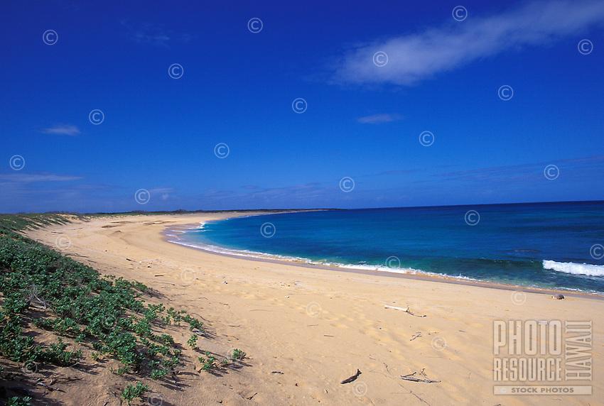 Pristine beach with monk seal on right, Niihau