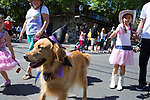 Kiwanis Pet Parade 2013