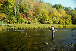 Fly fishing for Atlantic salmon, Nova Scotia, Canada<br />