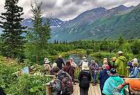 Eagle River Preserve, Pacific Horticulture tour of Alaska