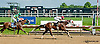 Elkhorn Creek winning at Delaware Park on 7/3/13