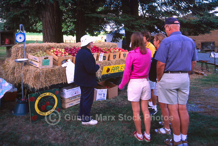 Apples for Sale on a Farm, at the Cowichan Valley Wine & Culinary Festival, on Vancouver Island, British Columbia, Canada