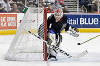 HERSHEY, PA - JANUARY 06: Hershey Bears goalie Ilya Samsonov (1) looks behind the net during the Milwaukee Admirals at Hershey Bears AHL game January 6, 2019 at the Giant Center in Hershey, PA. (Photo by Randy Litzinger/Icon Sportswire)
