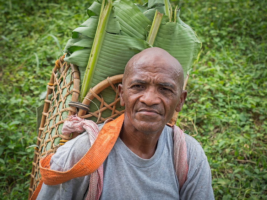 Tribal Aeta man collected Banana leaves, Philippines, the Aetas are famous for their survival skills, Pampanga,