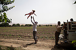 05/06/14. Goptapa village, Iraq. During a break from the job in the field, one of Rahima's colleague plays with his daughter, who sometimes accompanies him in the fields.