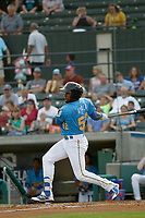 Myrtle Beach Pelicans outfielder Luis Ayala (52) at bat during a game against the Carolina Mudcats at Ticketreturn.com Field at Pelicans Ballpark on June 15 , 2018 in Myrtle Beach, South Carolina. Carolina defeated Myrtle Beach 4-2. (Robert Gurganus/Four Seam Images)