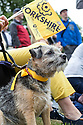 Grand Depart - Tour de France 2014<br /> Yorkshire England.<br /> Leaders go through famous town of Ilkley with Moors in distance.<br /> <br /> Dog fan  - Nellie  - Border Terrier<br /> Pic by Gavin Rodgers/Pixel 8000 Ltd