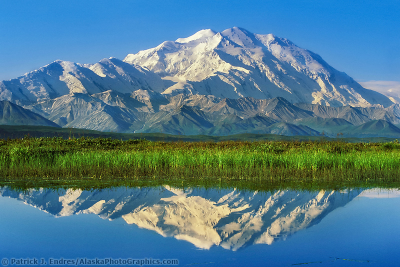 20, 3020+ ft. Mt. Denali reflects in a small tundra pond in Denali National Park, Alaska.