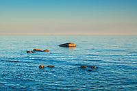 Stenar i en fjärd vid ett lugnt blått hav med horisont och himmel