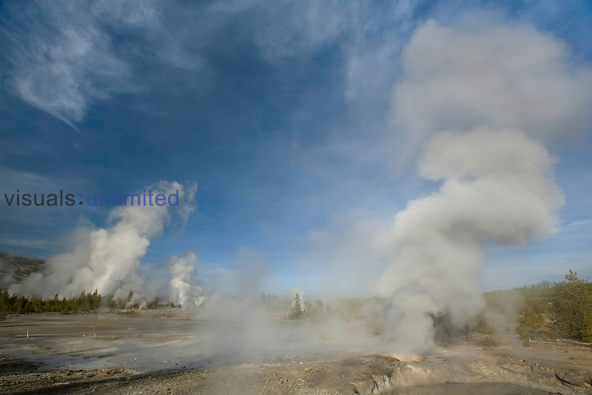 Veteran Geyser in Geyser Basin, Yellowstone National Park, Wyoming, USA