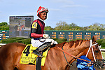HOT SPRINGS, AR - APRIL 14:Count Fleet Sprint Handicap. Oaklawn Park on April 14, 2018 in Hot Springs,Arkansas. #4 Whitmore with jockey Ricardo Santana Jr. (Photo by Ted McClenning/Eclipse Sportswire/Getty Images)