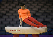 21st March 2018, Arena Birmingham, Birmingham, England; Gymnastics World Cup, day one, mens competition; Wei Sun (CHN) on the Pommel Horse during Training