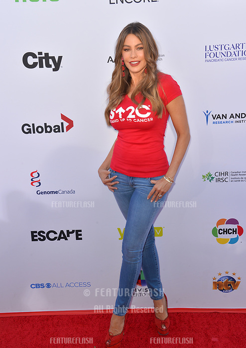 SANTA MONICA, CA. September 07, 2018: Sofia Vergara at the 2018 Stand Up To Cancer fundraiser at Barker Hangar, Santa Monica Airport.