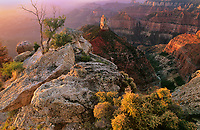 749220296 sunrise lights up the canyon walls sandstone formations and mount hayden at point imperial on the north rim of grand canyon national park in northern arizona