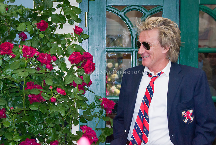 Rod Stewart, 2009 Chelsea Flower Show, at Highgrove Roses, celebrity promoting new flowers