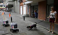 MEDELLÍN, COLOMBIA-APRIL 24: A dog barks the robots used to deliver food during the new pandemic Coronavirus, COVID-19. on April 24, 2020, in Medellín, Colombia. The launch of Colombian on-demand services Rappi is using robots on wheels designed by KiwiBot as a way to bring food to people who were forced to stay home during childbirth as a preventive measure to stop the spread of COVID-19 (Photo from Fredy Builes / VIEWpress via Getty Images).