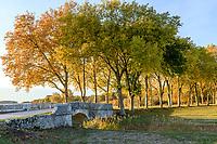 France, Loire-et-Cher (41), Chambord, château de Chambord, allée de platanes et petit pont en automne
